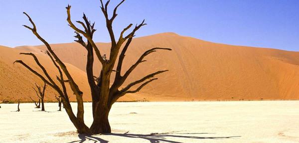 Windhoek Blog