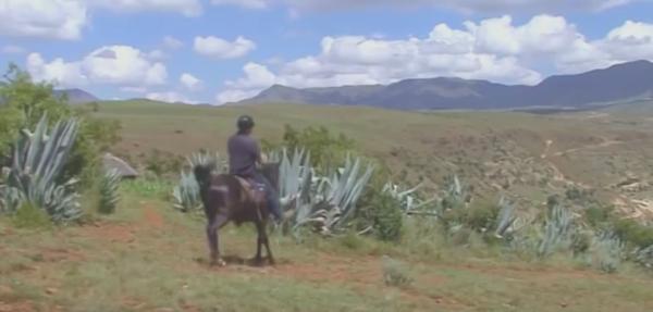 Maseru Video