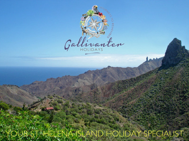 St Helena Tour Operators