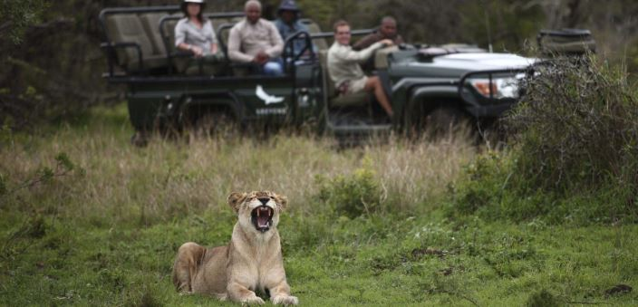Phinda Private Game Reserve: Why We Love This 'Seven Worlds of Wonder'