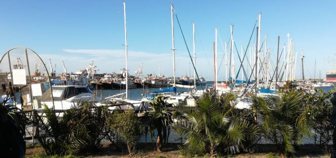 My City: Things to do in Port Elizabeth (with kids!)
